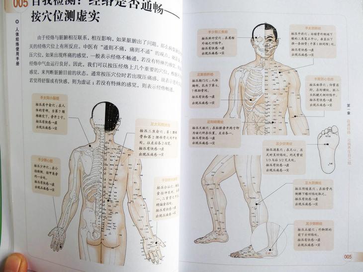 正版书籍 图解人体经络使用手册 穴位按摩中医养生人体经络书籍 家庭