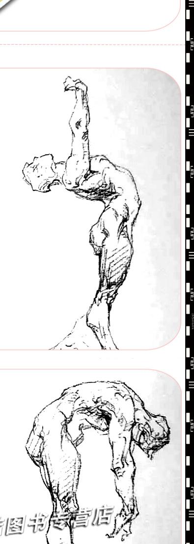 绘画教学解剖技法全集基础入门素描敲门砖风景大师临摹人物 速写书