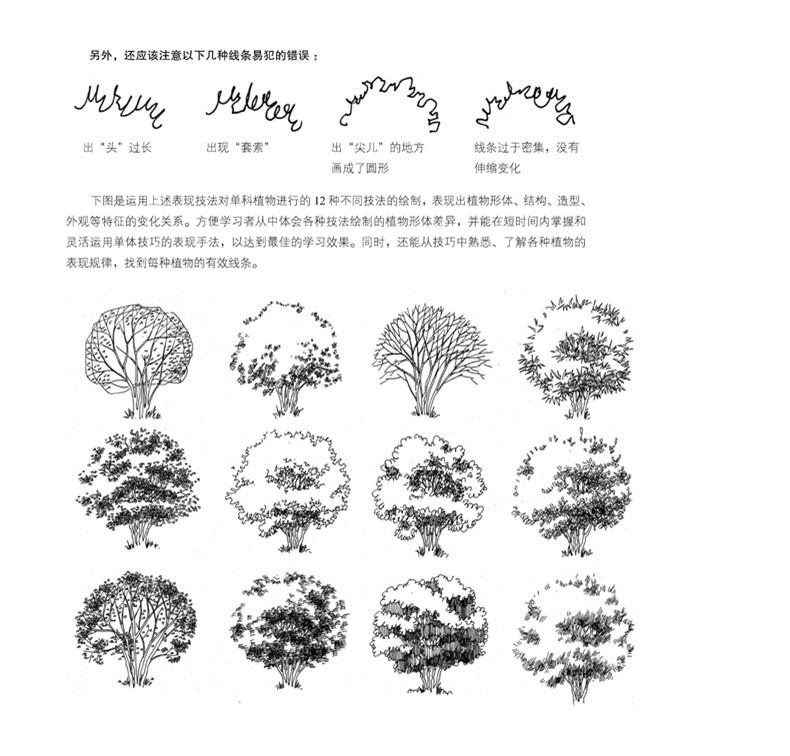 园林景观·植物手绘技法资料集