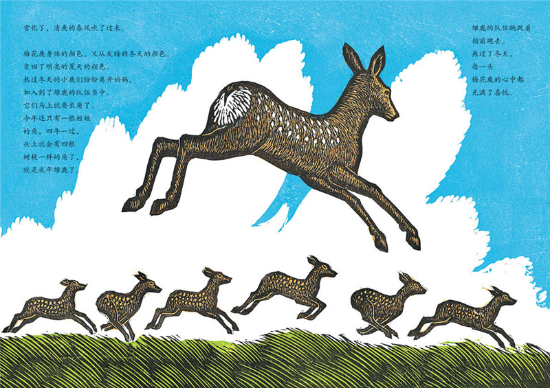 感悟生命动物绘本:跑向春天的梅花鹿
