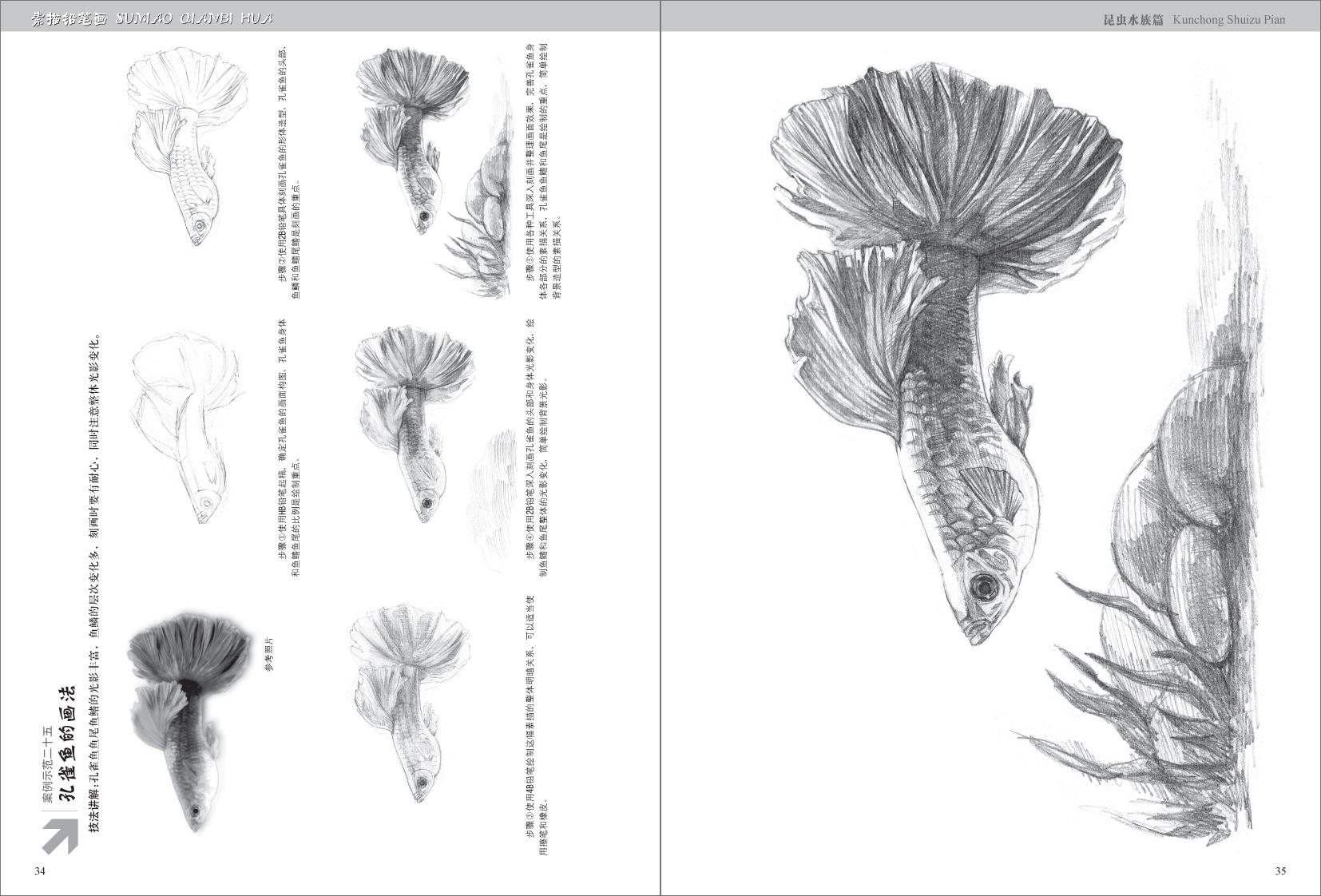 fun书 素描铅笔画昆虫水族篇  各式各样的昆虫水族总会以不同的方式与
